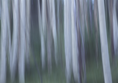 aspens_abstract
